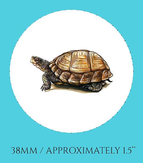 Box Turtle 38mm (1.5'') Handmade Glass Dome Magnet