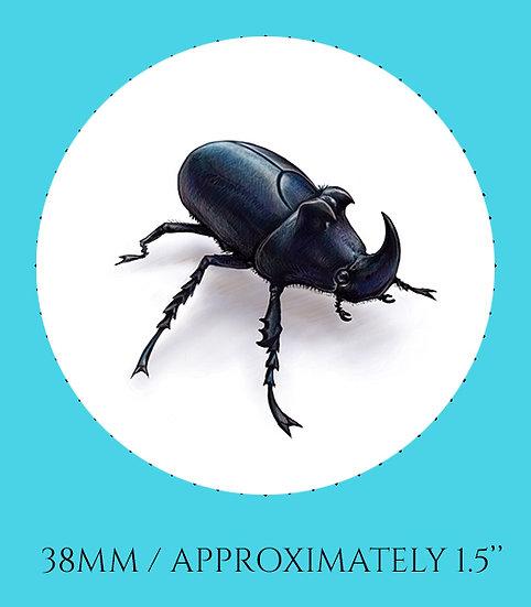 Black Beetle 38mm (1.5'') Handmade Glass Dome Magnet