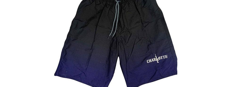 Black & Blue Swim Suit