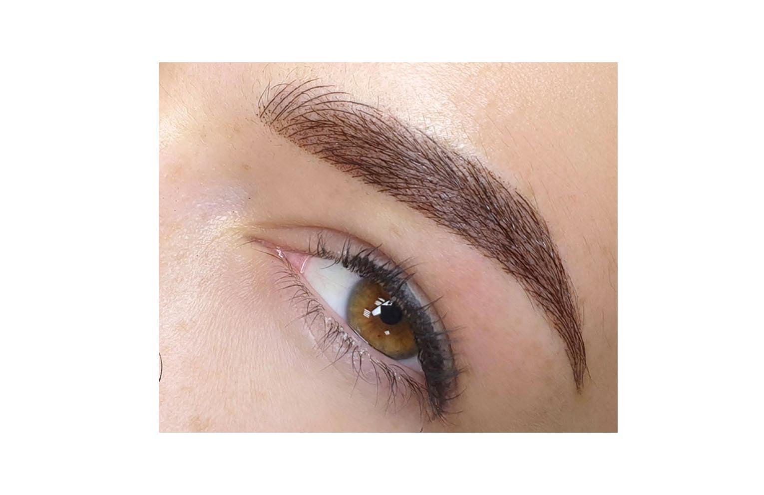Combained Ombre/Microblading