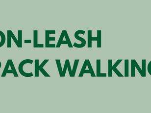 On-Leash Pack Walking