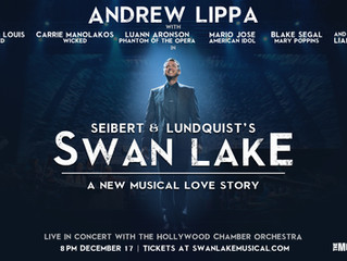 If you don't want to watch Nutcracker, go see Seibert & Lundquist's Swan Lake, the Music