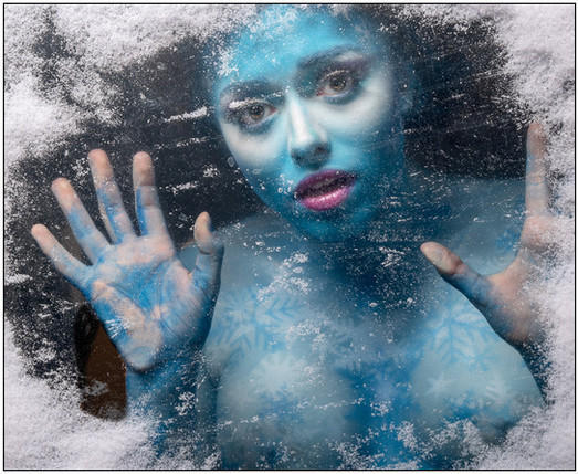 Trapped In The Ice