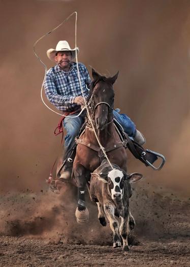 BOS-P_Chong Wu_Cowboy take me home_A.jpg