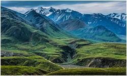 Green Velvet Landscape