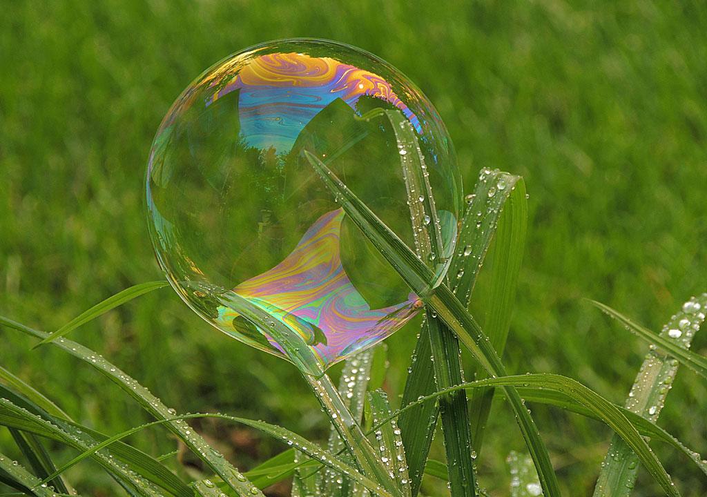 Bubble Resting