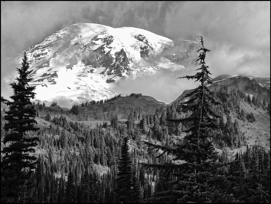 Majestic Mt. Ranier