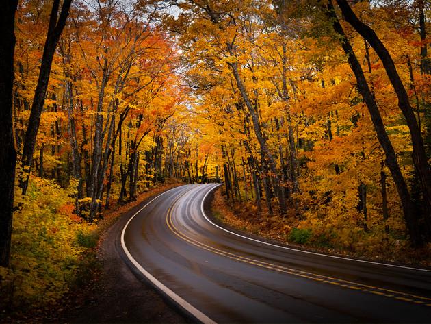 Bright Autumn Curve