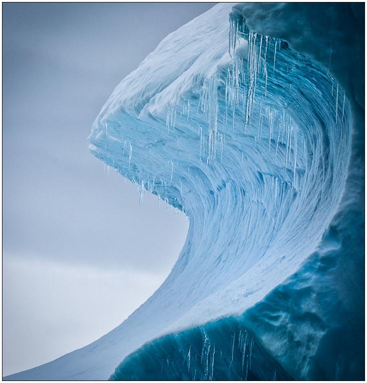 Frozen Rip Curl