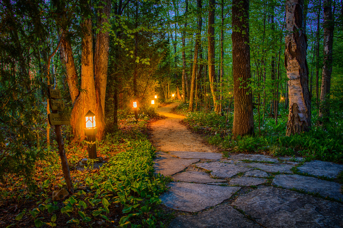 Path to Enlightment