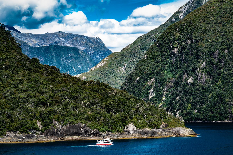 Cruising The Fiord