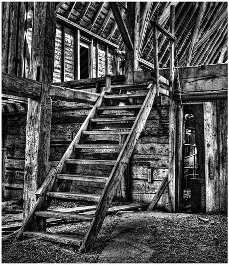 In the Old Barn