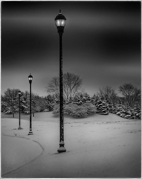 Evening Sentinels