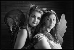 BFF Best Fairy Friends