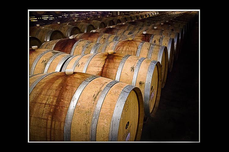 Barrels of Fun