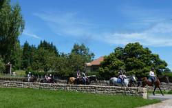 équitation,balades à poneys