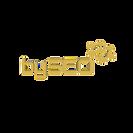 BY_SEO_logotipas_cdr_korekcija-9-1_edite