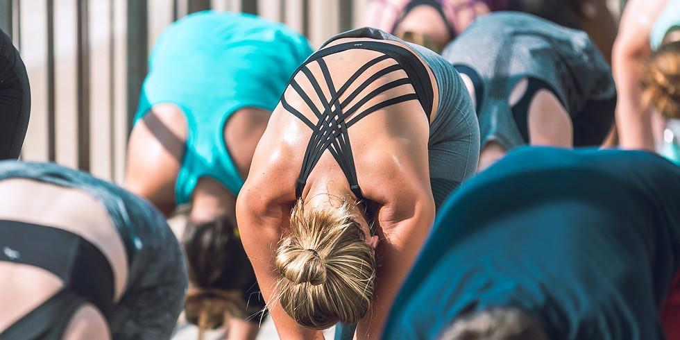 Therapeutic Asana (yoga postures) & Restorative