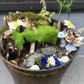 Addy's Fairy Garden