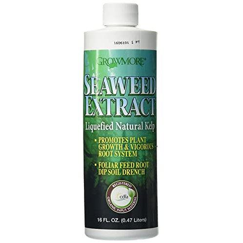 GrowMore Seaweed Extract