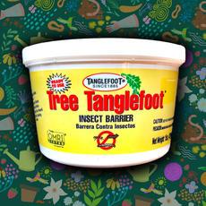 Tree Tanglefoot