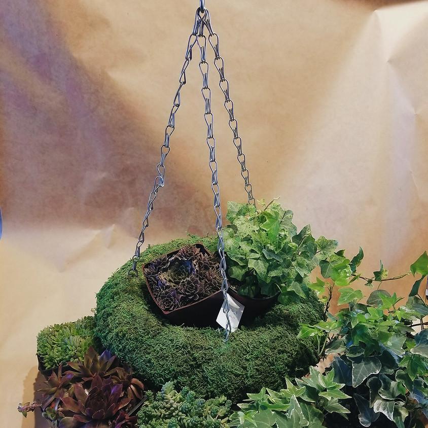 'Make It & Take It' Living Hanging Wreath