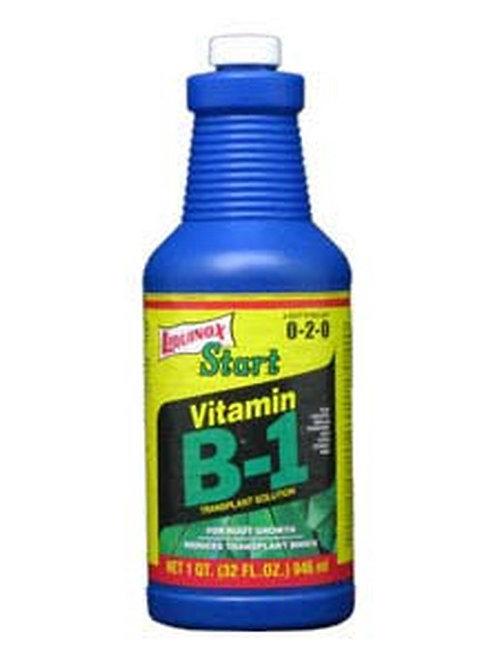 Liquinox Start Vitamin B-1