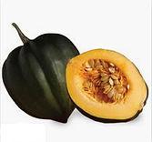 acorn squash.jpg
