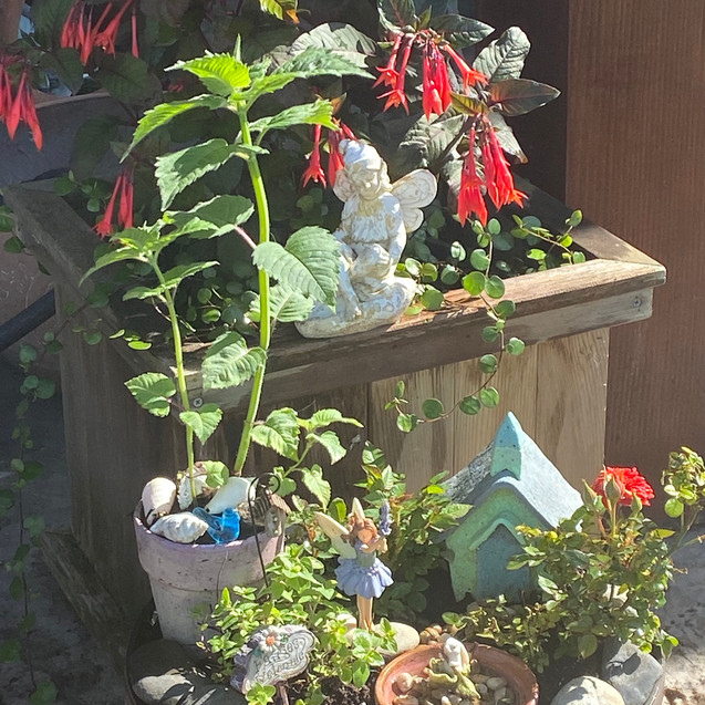 The Pounders' Fairy Garden