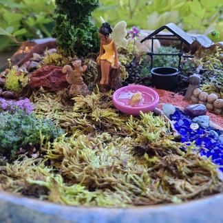 Karen's Fairy Garden