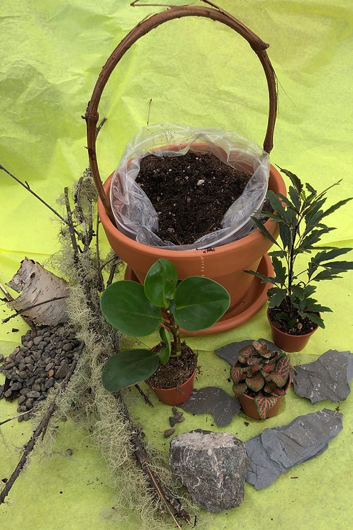 Indoor Fairy Garden Kit