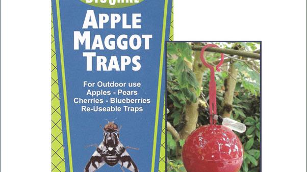 BioCare Apple Maggot Traps