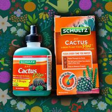 Cactus Plus