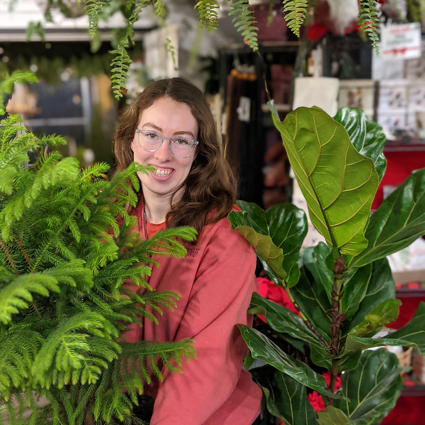 Houseplant 101 With Holly!