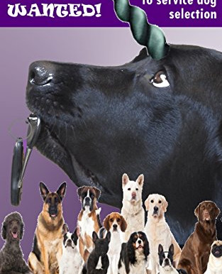 E-BOOKLET on Service Dog Selection Released!