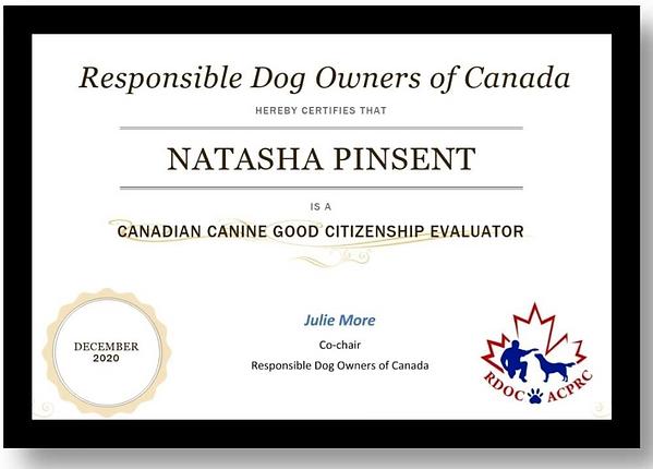 Natasha Evaluator Certificate.png