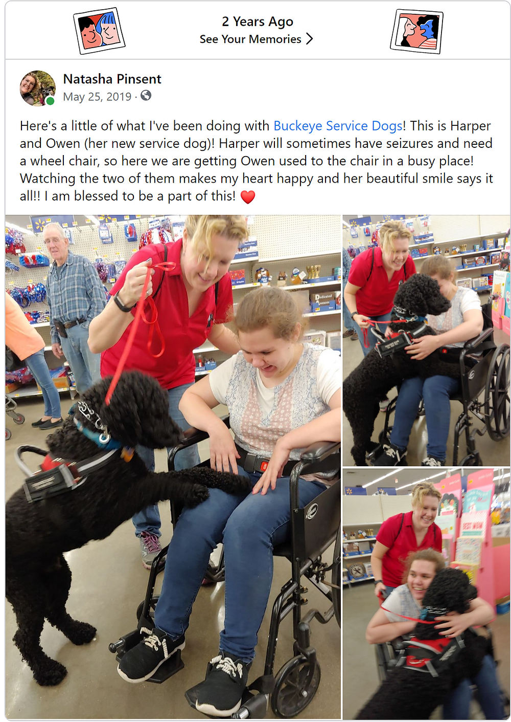 A girl in her wheelchair and her Service Dog, Signal Service Dogs, Newfoundland and Labrador, Therapy dogs, Buckeye Service Dogs