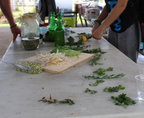 Cooking with Science at Community Gardens