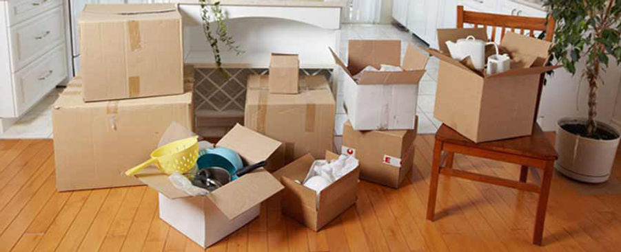 house-relocation-the-shifting-wale.jpg