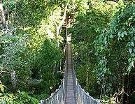 Inkaterra Canopy Walkway.jpeg