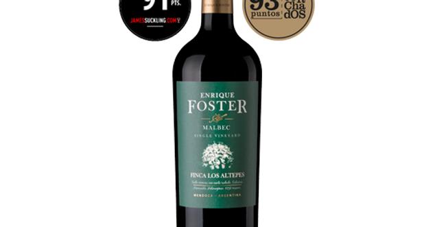 Enrique Foster Single Vineyard Los Altepes Malbec