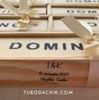 Domino_ivory.jpg