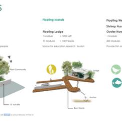 MLA Student Avantika Dalal. 2017. Modular Design as a solution for sea level rise adaptation.