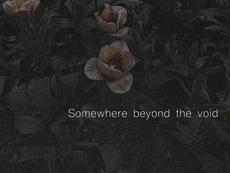 Somewhere beyond the void