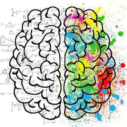 5 mitos y verdades sobre el aprendizaje y el cerebro