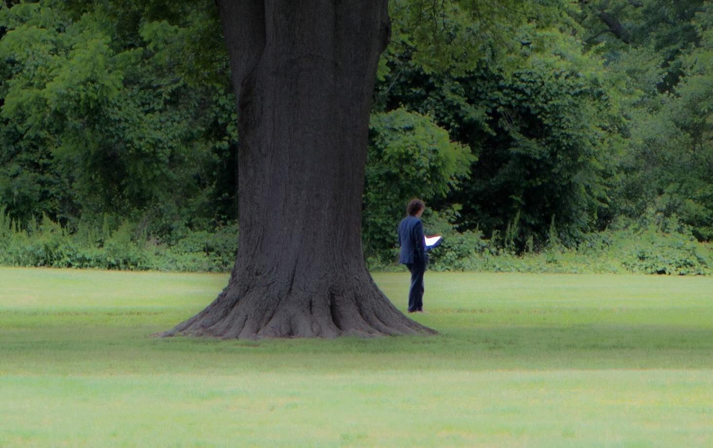 TreeMemorial_crop