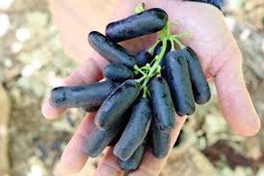 Seedless Sweet Sapphire Grapes, Organic - 1 lb
