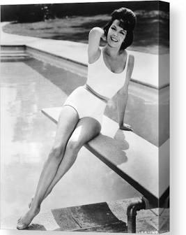 Annette Funicello in swimsuit.jpg