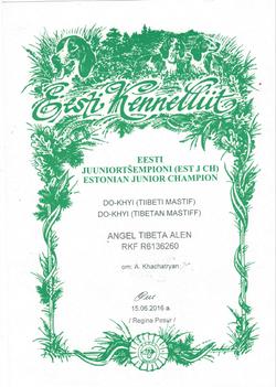 Юный Чемпион Эстонии