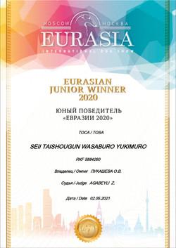 Сабуро Ю.Евразия 2020